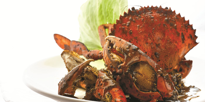 Black Pepper Crab from JUMBO Seafood Gallery (Riverwalk) in Clarke Quay, Singapore