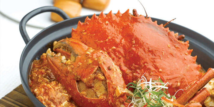 Chilli Crab from JUMBO Seafood Gallery (Riverwalk) in Clarke Quay, Singapore