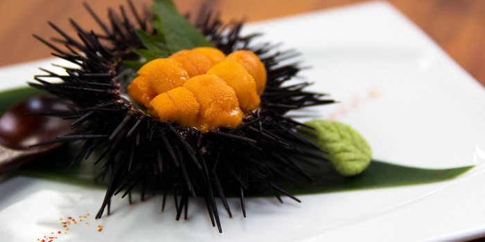 Uni from Tamashii Robataya on North Canal Road in Boat Quay, Singapore