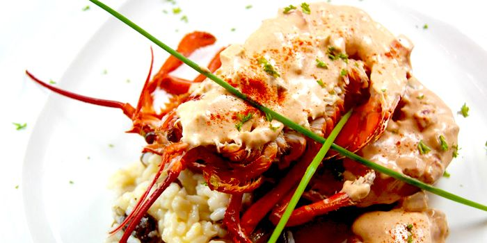 Boston Lobster, risotto, butter sauce, de Belgie, Elgin, Soho, Hong Kong