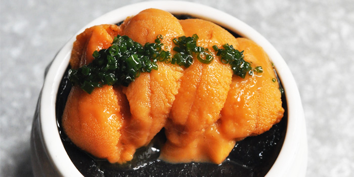 Sea Urchin Pudding from Lolla along Ann Siang Road, Singapore