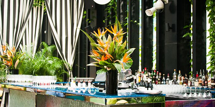 Poolside of HI-SO Rooftop Pool Bar atop SO Sofitel Singapore in Raffles Place, Singapore
