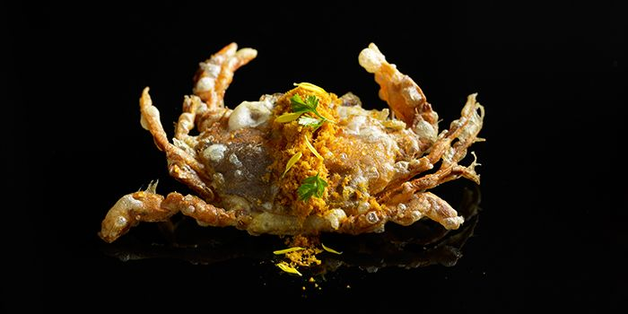 Crab with Curry Floss from Mitzo Restaurant & Bar in Grand Park Orchard along Orchard Road, Singapore