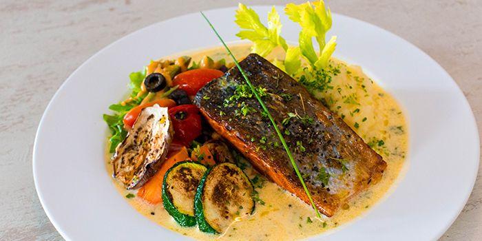Salmon from 1 Tyrwhitt Bistro Bar in Kallang, Singapore