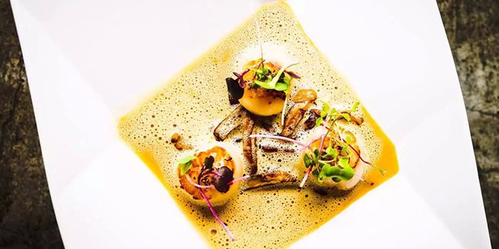 Scallops from Cuivre by Michael Wendling in Xuhui, Shanghai