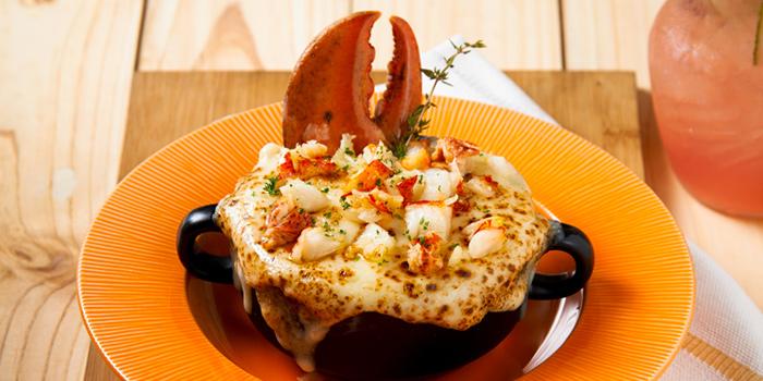Lobster Macroni & Cheese from Meat Bar 31 in Sukhumvit Soi 31, Bangkok