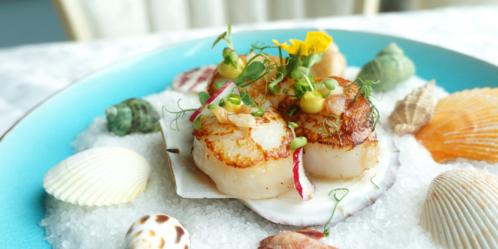 Scallops, Princess Cafe, Causeway Bay, Hong Kong
