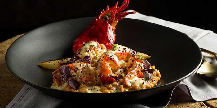 Maine Lobster from Adrift by David Myers at Marina Bay Sands in Marina Bay, Singapore
