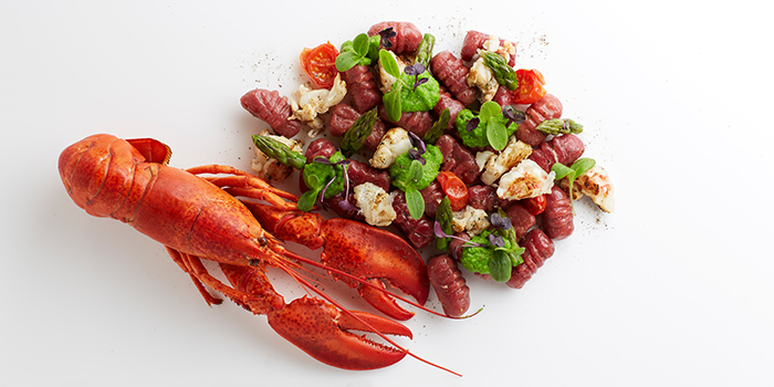 Homemade Boston Lobster & Beetroot Gnocchi from Basilico in Regent Singapore in Tanglin, Singapore