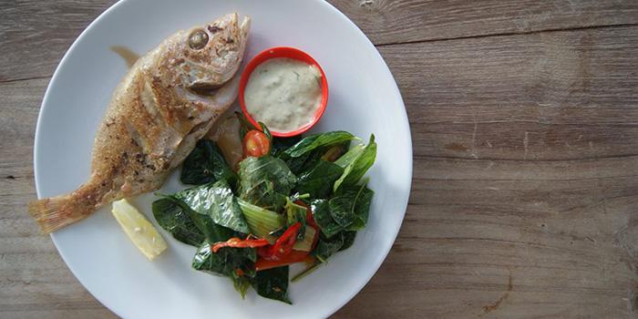 Fish from Grain Espresso in Seminyak, Bali