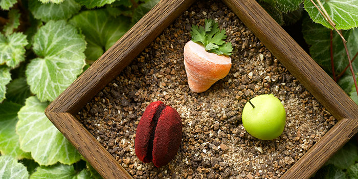 ABC Petit Fours from Pollen in Gardens by the Bay in the Flower Dome, Singapore