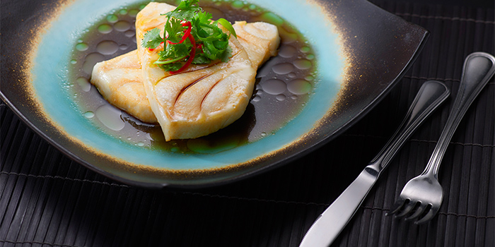 Hong Kong Cod from Spices Cafe in Concorde Hotel Singapore in Orchard, Singapore