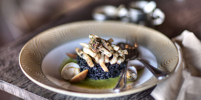 Squid Ink Risotto from The Bistrot in Seminyak, Bali