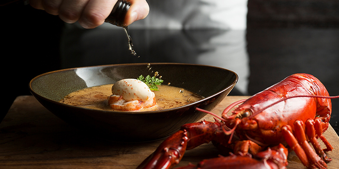Boston Lobster Bisque from Ash & Elm in InterContinental Singapore in Bugis, Singapore
