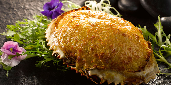 Baked Crab Shell from Crystal Jade Dining IN Restaurant in VivoCity in Harbourfront, Singapore