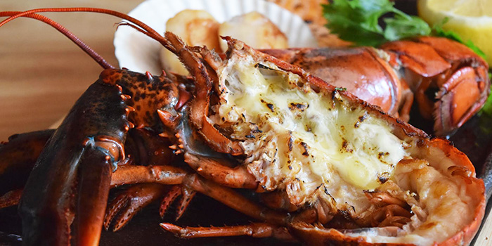 Lobster from Teppan Bar Q in Robertson Quay, Singapore