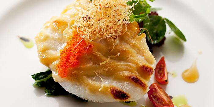 Baked Sea Perch from Xin Cuisine Chinese Restaurant in Outram, Singapore