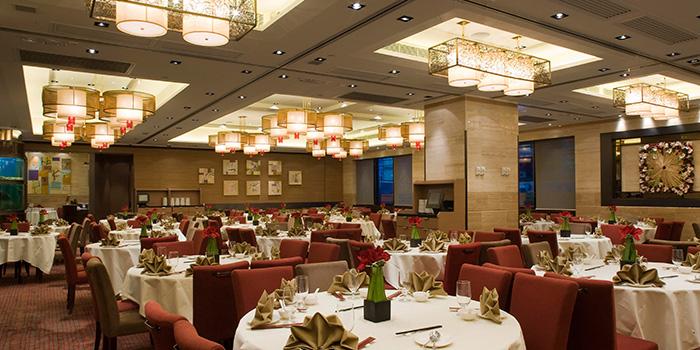 Dining Area Of Lei Garden Wan Chai Hong Kong