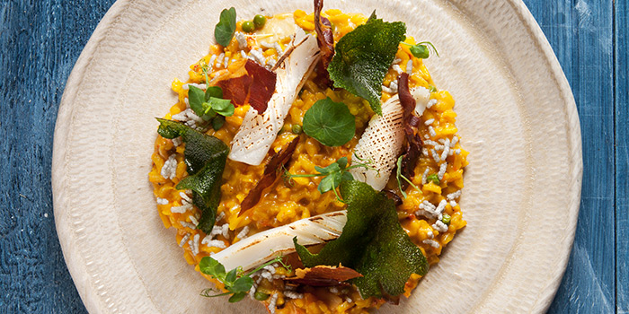 Carnaroli Risotto from Open Farm Community in Dempsey, Singapore