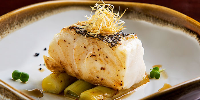 Glacier 51 Toothfish Fillet from Opus Bar & Grill in Hilton Hotel along Orchard Road, Singapore