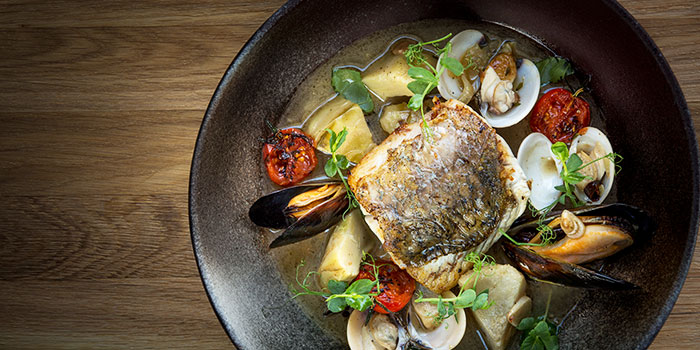 Wild Sea Bass from Opus Bar & Grill in Hilton Hotel along Orchard Road, Singapore