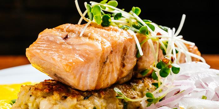 Salmon Tacu from Above Eleven in Sukhumvit Soi 11, Bangkok