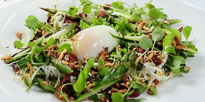 Asparagus Poached Egg Salad, Watermark, Central, Hong Kong