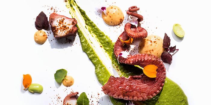 Galician Octopus, Mirage Bar & Restaurant, Wan Chai, Hong Kong