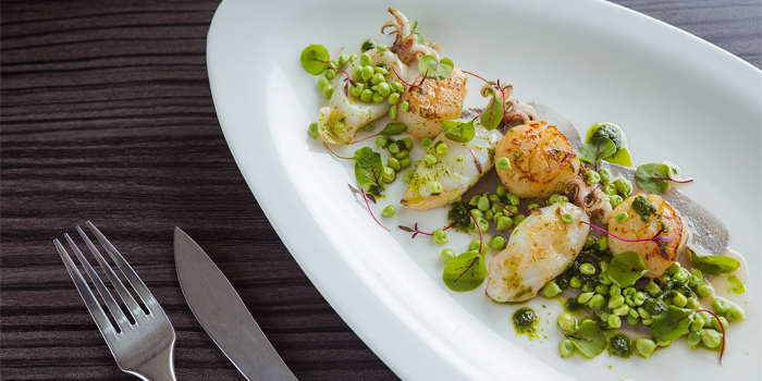 Pan Seared Scallops Calamari from Kata Rocks Oceanfront Restaurant in Kok-Tanode Road Karon Muang Phuket, Thailand