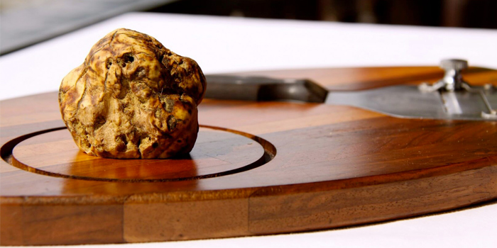 White Truffle from Damaurizio Bar and Ristorante in Kathu Phuket, Thailand