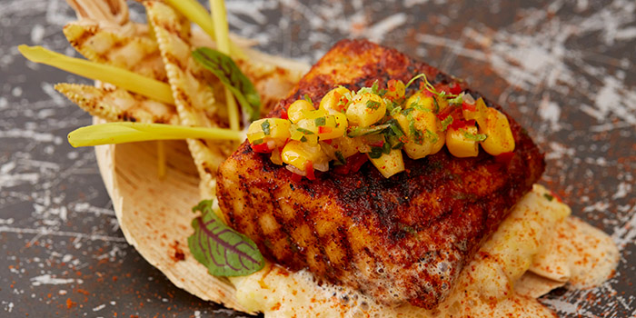 Cobia Char Grilled Cobia Fish, The Continental, Admiralty, Hong Kong