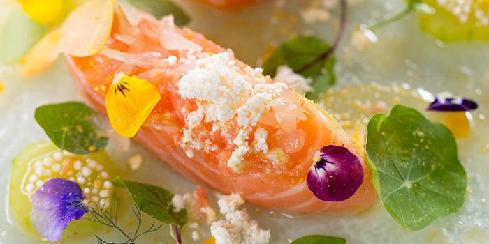 Confit salmon, pomelo, grapefruit vanilla dressing, The Pawn, Wan Chai, Hong Kong