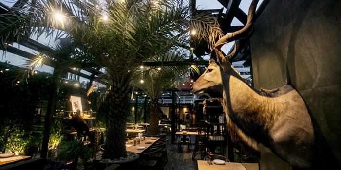 Dining Area from Wild & Co. in Soi Farmwattana, Bangkok