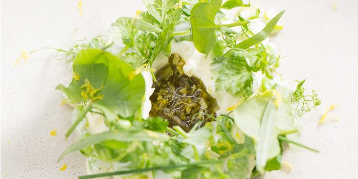 House-made ricotta, broad beans and green peas, sorrel, The Pawn, Wan Chai, Hong Kong