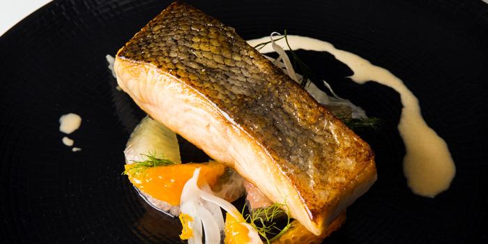 Line Caught White King Salmon from Esenzi in Iniala Beach House Baan Natai, Khok kloi, Takuathung, Phangnga, Thailand