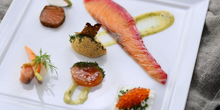 Salmon in Six Ways, FINDS, Tsim Sha Tsui, Hong Kong