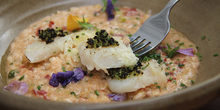 Mentai Risotto from The Armoury in Bugis, Singapore