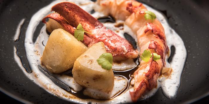 Lobster, Coconut Sauce, Roasted Celeriac from FOO