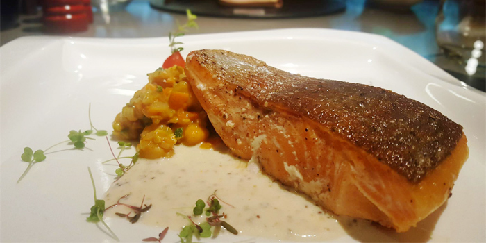 Pan-fried Salmon with chick peas and whole grain mustard sauce from Sam