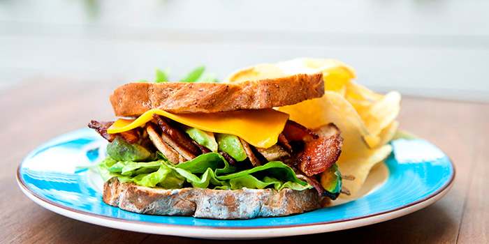 Grilled Chicken Bacon & Cheese Sandwich from Privé Orchard in Orchard Road, Singapore