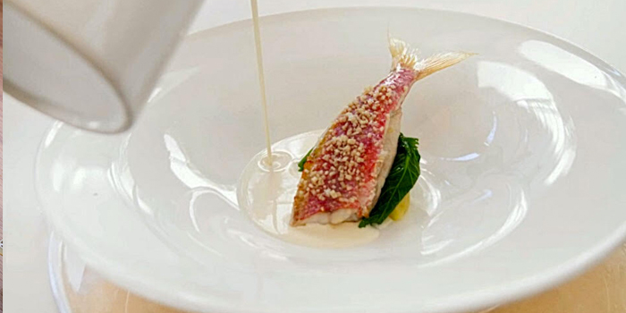 Red Mullet with Smoked Cheese Sauce from Capri Trattoria & Pizzeria serving Italian cuisine at Binjai Park, Singapore