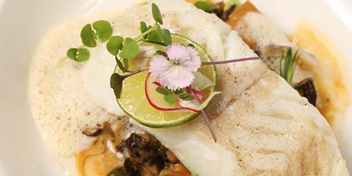 Roasted Mediterranean Cod Fish from Le Vendome in Sukhumvit Soi 31, Bangkok