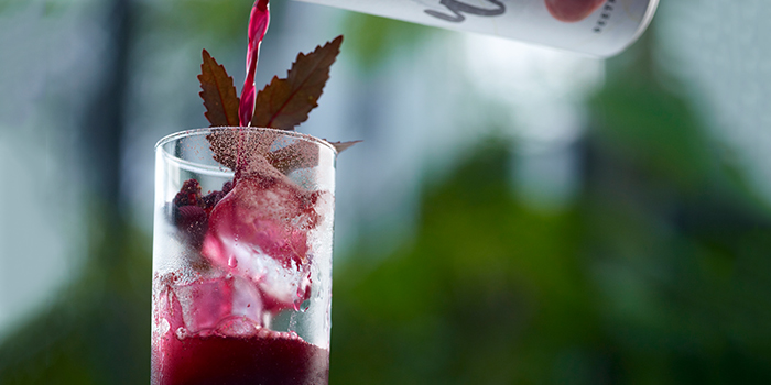 Beetroot Hibiscus Sling from Summerhouse in Seletar, Singapore