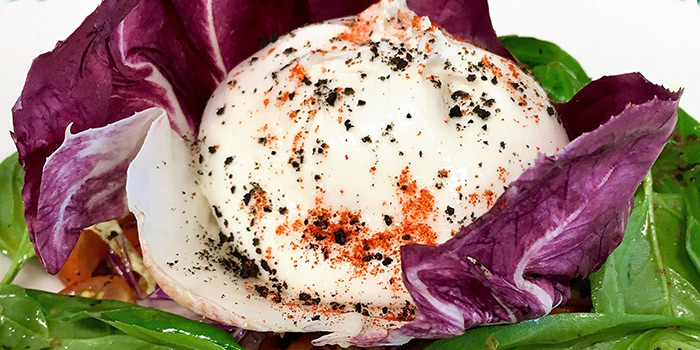 Burrata Salad from The Terminal in Yio Chu Kang, Singapore