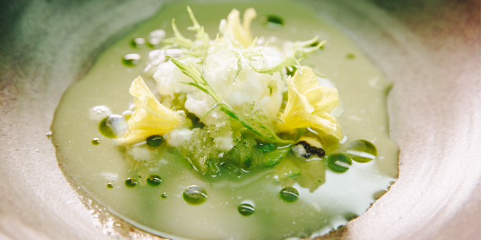 Cucumber with Avocado, Butter Milk Sorbet and Caviar from PRU in Cherngtalay, Phuket, Thailand