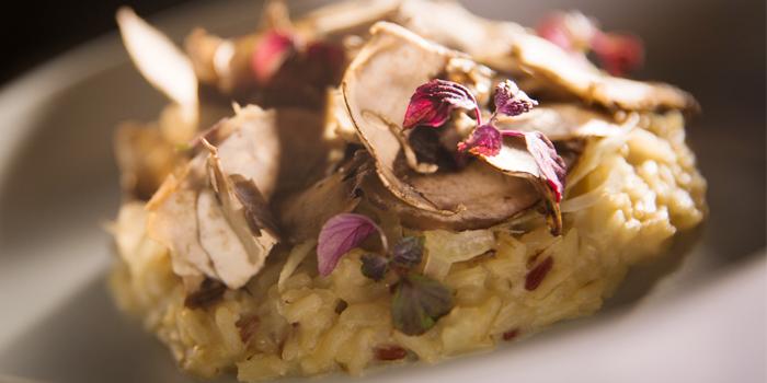 Deep Sea Crab Sinlek Rice Risotto, Fennel, Portobello Mushrooms from PRU in Cherngtalay, Phuket, Thailand