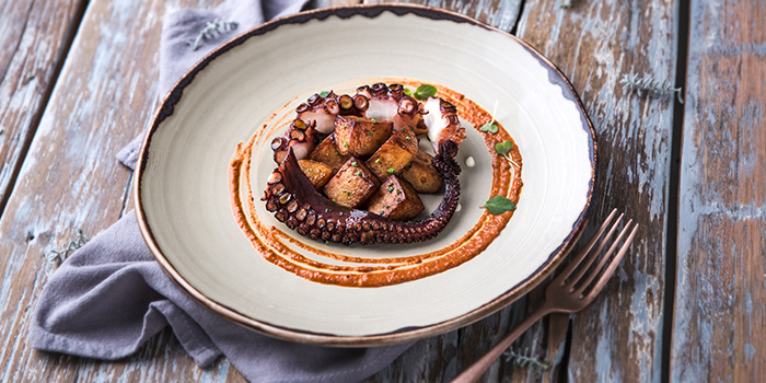 Spanish Octopus from PORTA in Park Hotel Clarke Quay in Robertson Quay, Singapore