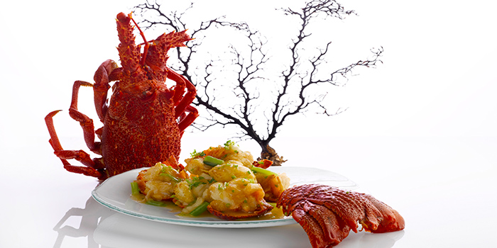 Baked Australian Lobster with Superior Broth from Crystal Jade Palace in Orchard, Singapore