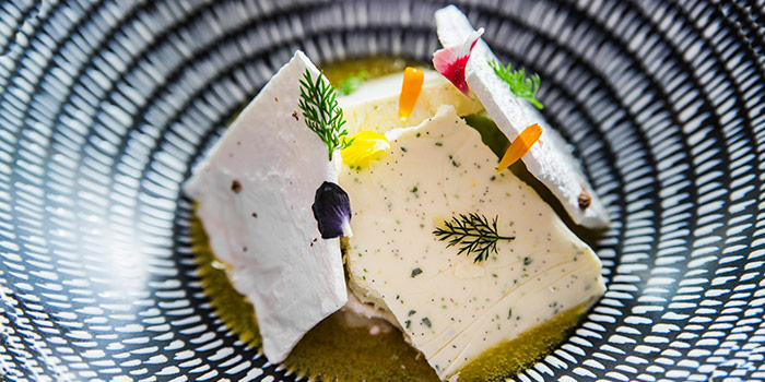 Fennel from Alma By Juan Amador at Goodwood Park Hotel in Orchard, Singapore