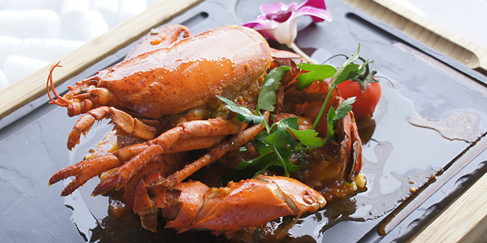 Lobster Ravioli from Baci Baci in Serangoon, Singapore